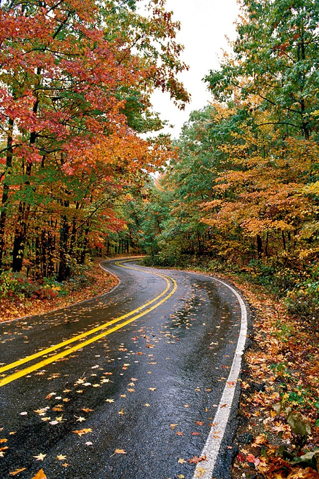 Talimena Scenic Byway in Mena, AR. Photo courtesy of the Arkansas Department of Parks and Tourism.